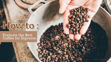 How to Evaluate the Best Coffee for Espresso