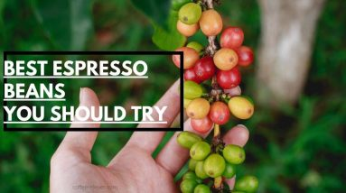 best espresso beans you should to try
